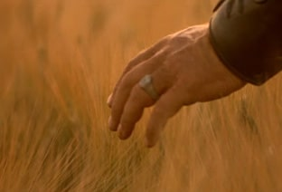 hand touching wheat, gladiator