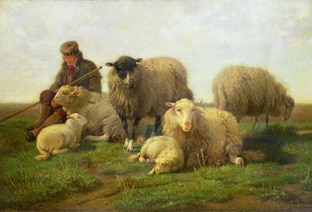 shepherd and sheep