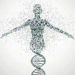 Hating God Curses Our Genetic Code