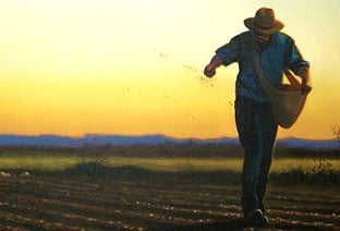 Sowing the Seeds that BELIEVE